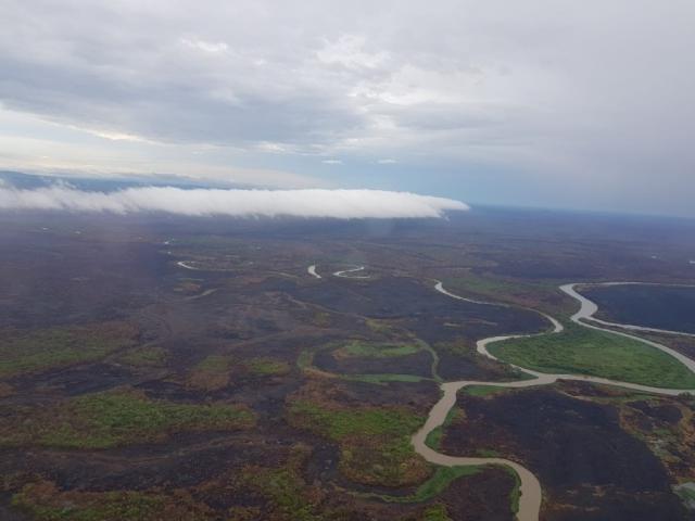 Precipitações da região pantaneira frearam incêndios florestais (Foto: Divulgação/CBMMS)
