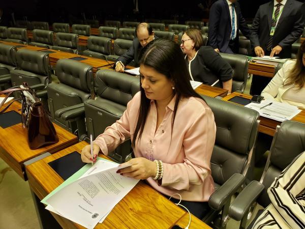 Rose Modesto (PSDB/MS) quer aumentar a pena para o crime de feminicídio. (Foto: Divulgação)